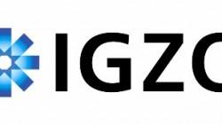 igzologo