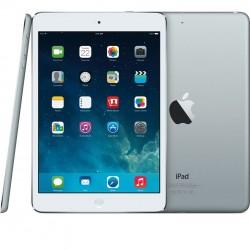 iPadminiRetina