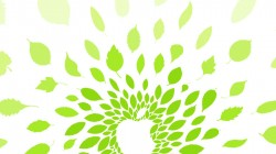 Apple-Store-Tokyo-iPad-Air-Jason-Zigrino-1024x1024
