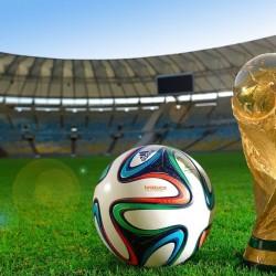 20th_fifa_world_cup-wallpaper