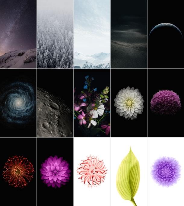 jason-zigrino-ios-8-gm-wallpapers-preview-915x1024