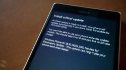 windows-phone-update-14203