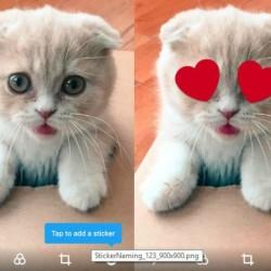 twitter-sticker-feature-2