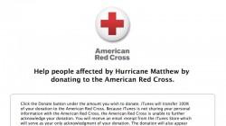 matthew-red-cross-800x809